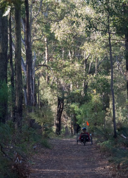 We're tempted by a dirt road return route from Marrinup Falls
