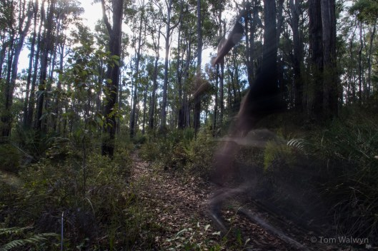 Ghosting along (illicit) trails