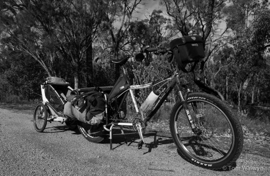 """The full 'train' loaded up.  After the last off-road chariot-pulling experience, I've put better mtb tyres on.  The rear 26x2.4"""" Maxxis Ardents only just fit the Big Dummy frame."""