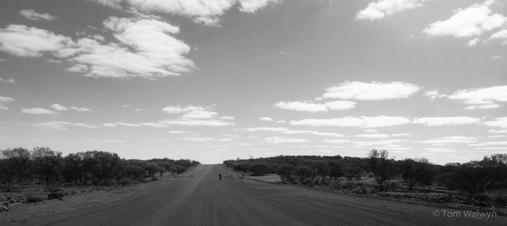 40km out from the start in Wiluna, and a similar distance at the end into Billiluna were graded and fast.  Big skies already a constant though, for us, the clouds were unusual