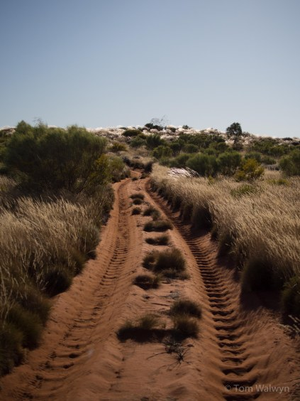 This is what we found hardest - unavoidable, soft corrugations - here leading uphill into a dune