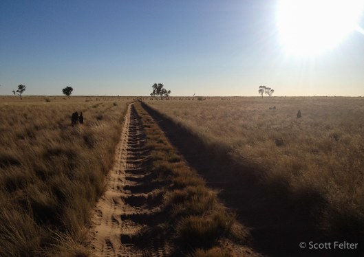 Either side of well 51 - the final stretch of bad corrugations then, for those heading north, it's easy riding