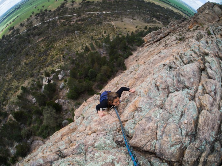 The biggest faces take several rope lengths of upward motion.  This belay ledge is over 100m above our starting point.