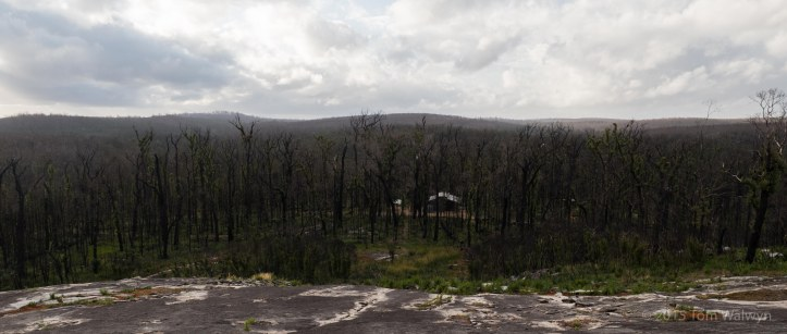 The Yirra Kartta hut was rendered visible from this viewpoint atop the neighbouring granite dome.